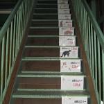 健康への道は 階段から
